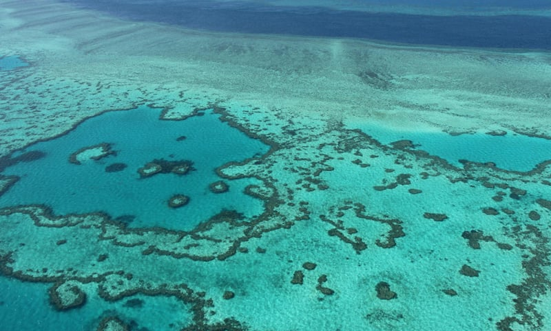 This photo, taken on November 20, 2014, shows an aerial view of the Great Barrier Reef off the coast of the Whitsunday Islands, along the central coast of Queensland, Australia. — AFP