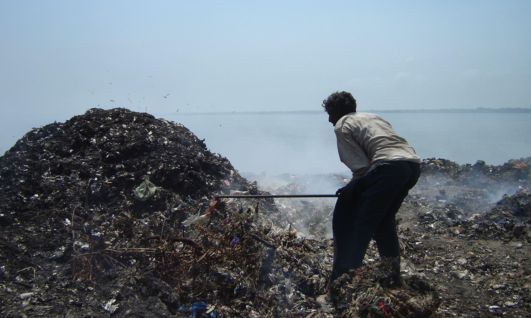 کوڑے میں شامل پلاسٹک سمندری حیات کے لیے مہلک خطرات پیدا کردیتا ہے