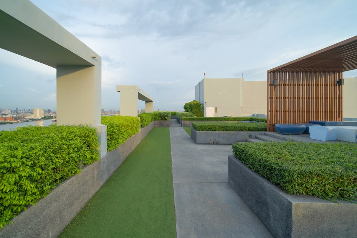 Roof gardens keep buildings cooler in summer and warmer in winter