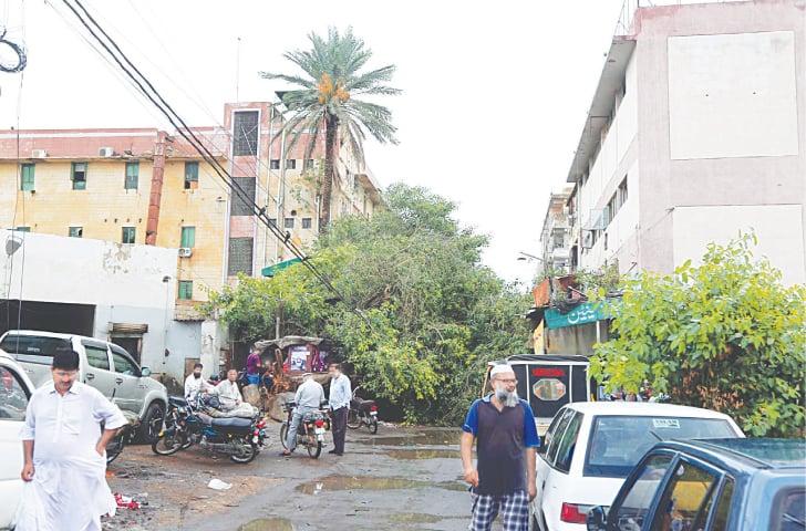 A tree felled by the rain near Sindh Secretariat on Wednesday (PPI).
