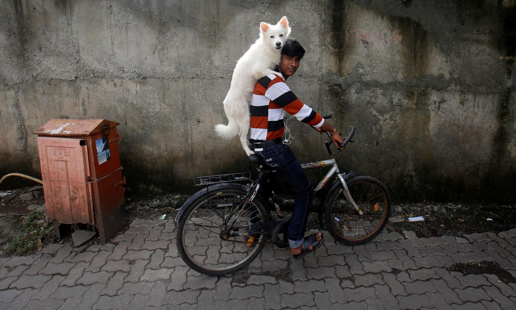 A man rides a bicycle as he carries his dog on his shoulders in Mumbai, July 9, 2013. — Reuters/Danish Siddiqui