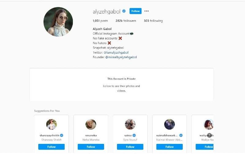 اداکارہ نے کچھ دن قبل ہی انسٹاگرام کر پرائیوٹ کیا تھا—اسکرین شاٹ