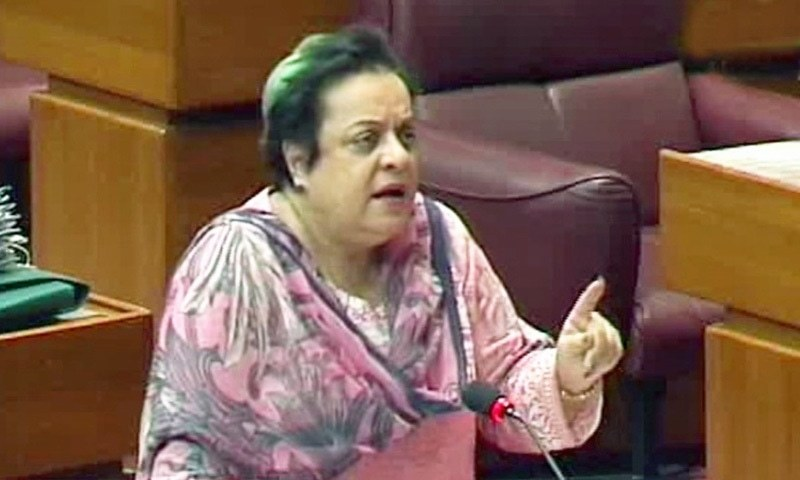 Federal Minister for Human Rights Dr Shireen Mazari said the government had recently passed a law against rape cases, but only laws would not work because there was a need to change the mindset of society about women. — DawnNewsTV