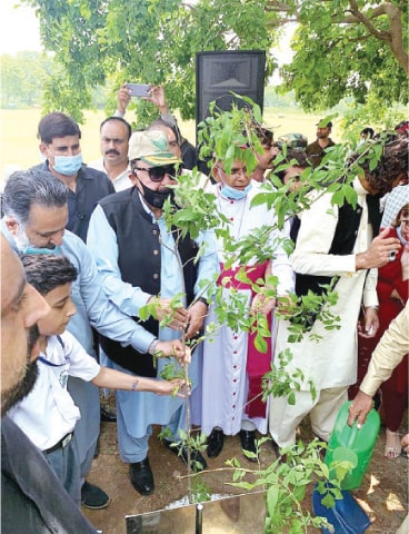 Interior Minister Sheikh Rashid Ahmed launches the tree plantation drive in Rawalpindi cantonment by planting a sapling in Saint Mary's High School on Saturday. — APP