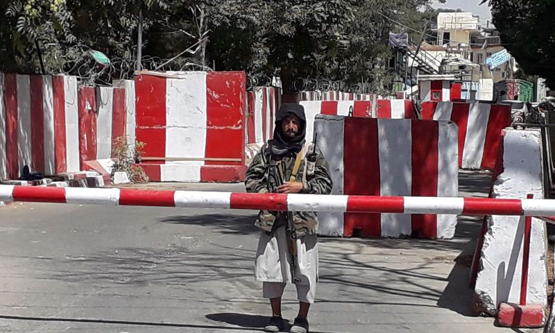 Kabul offers Taliban power-sharing to end violence: reports
