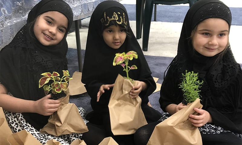 'اب مجالس میں تبرک کے طور پر پودے بانٹے جارہے ہیں'