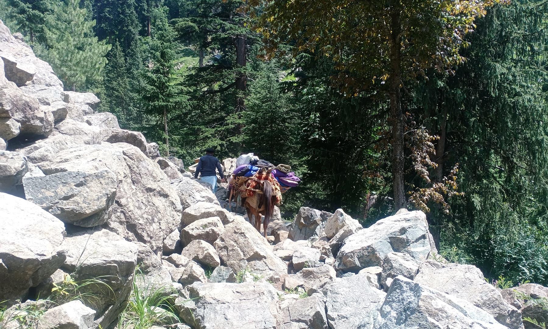 پتھریلا اور چڑھائی پر مشتمل راستہ—عظمت اکبر