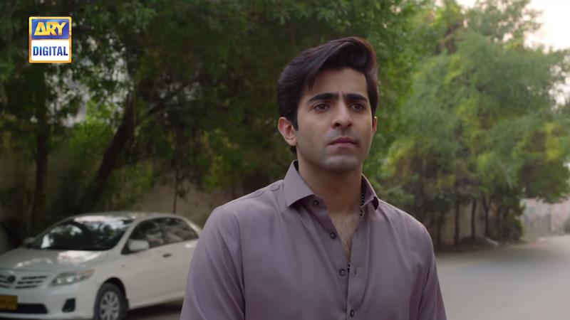 Sheheryar Munawar as Aslam