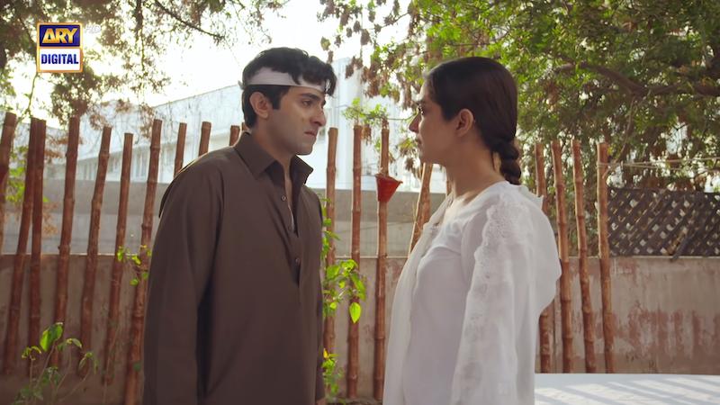 Sheheryar Munawar and Maya Ali