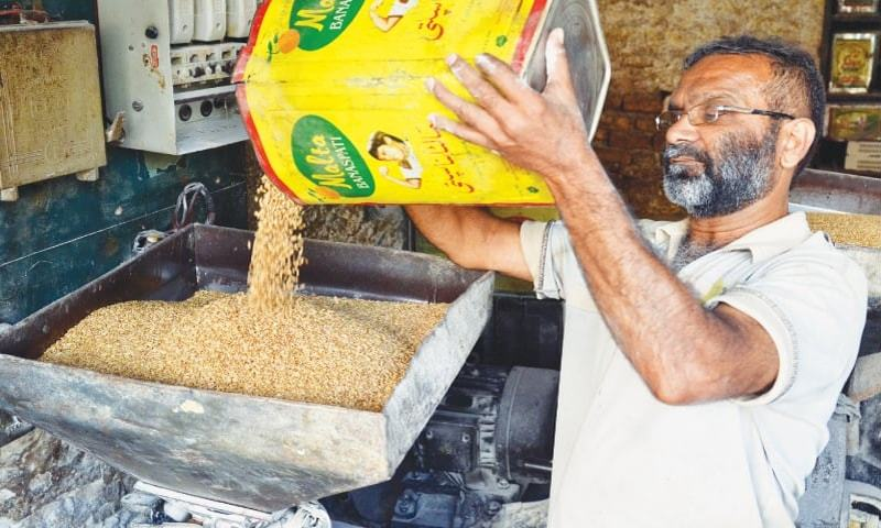 This file photo shows a man pouring wheat into a milling machine. — Dawn/File