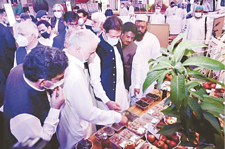 DERA ISMAIL KHAN: Prime Minister Imran Khan visits a research stall.—Dawn
