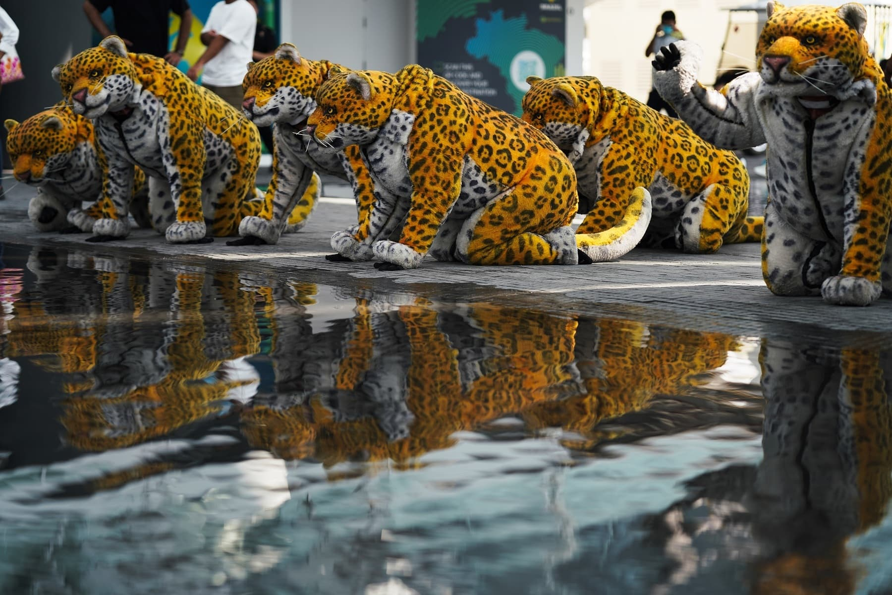 A troop of performers dressed as jaguars pose near the water at the Brazil pavilion at Expo 2020. — AP