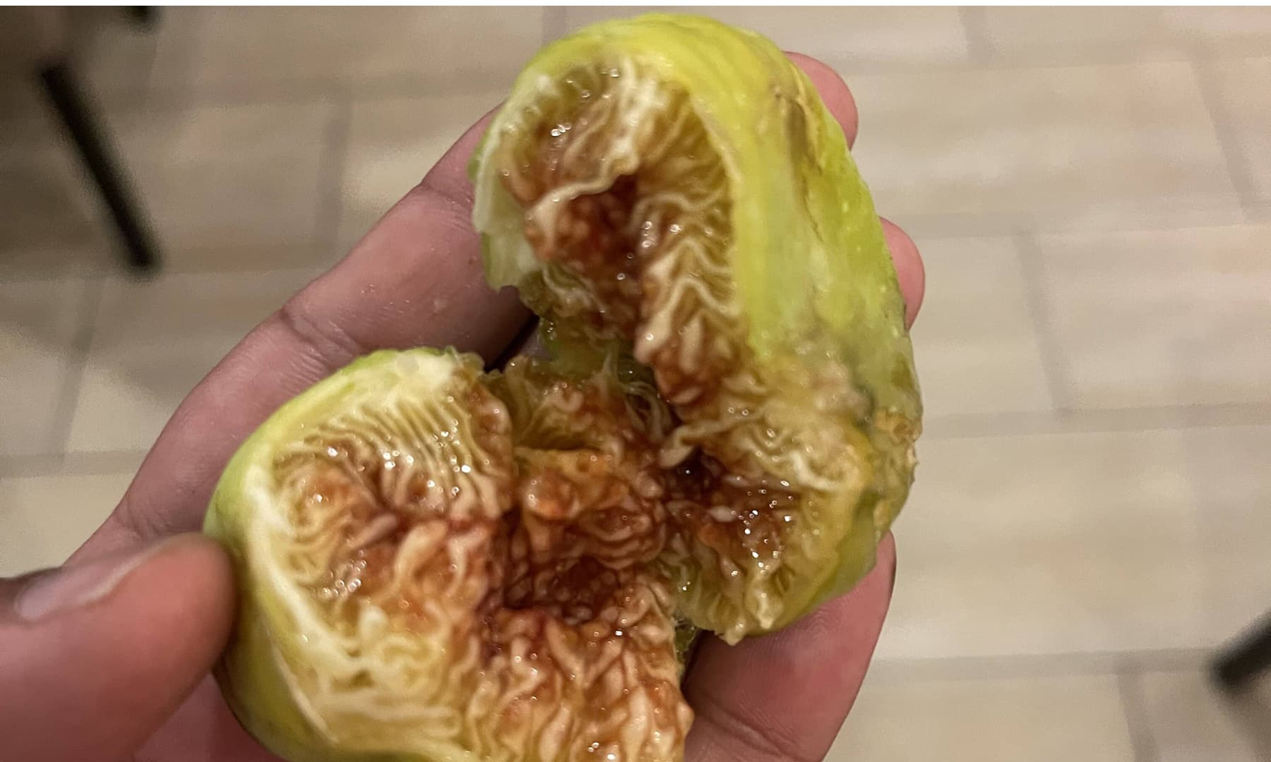 انجیر کا پھل (2021ء)