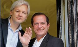 Julian Assange: a year in the embassy