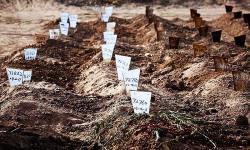 Herald Exclusive: Grave concerns