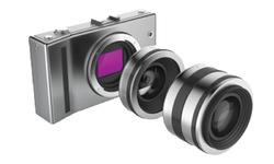 Mirror-less cameras  are the future