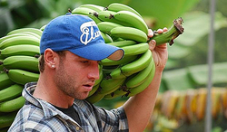 Phil Hughes: A country boy who chased 'Baggy Green' dreams