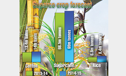Agricultural growth picks up