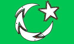 پاکستان کی حیرت انگیز کامیابیاں