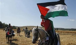View from abroad: Palestine — blaming the victim