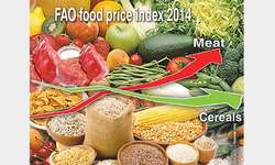 FAO food price index drops in December