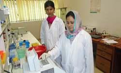 "Pakistani scientists develop DNA ""barcode"" to identify salt tolerant plants"