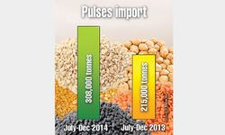 Pulses output down, imports up