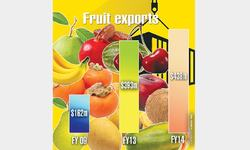 Fruit exports up despite low output
