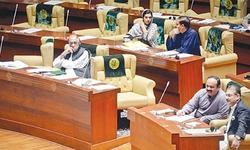 Sindh Assembly approves consumer courts, protection council establishment