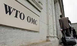 S. Korea pushes ahead on oil pipe dispute: WTO