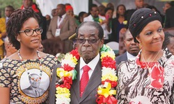 Elephants slaughtered for Mugabe's birthday feast