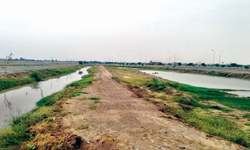 Drain land 'included' in FDA City