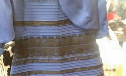 The dress: Polls show even split between Team White and Team Blue