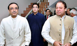 PML-N, PPP offer Senate post to allies