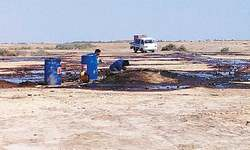 Spillage from oil well plays havoc with fish ponds