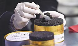 Lombardy, the new Caspian for caviar