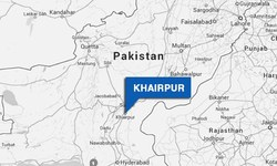 14 killed as bus rams into truck head-on
