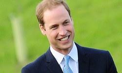 برطانوی شہزادے کی نئی ملازمت