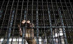 Al Qaeda frees 300 inmates in Yemen jailbreak