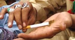 Drugs driving capital's highflyers?