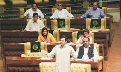 PTI walkout, new province controversy mar jubilant PA session
