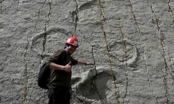 Landslide reveals 68 million years old dinosaur tracks in Bolivia