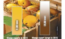 Improved marketing of mango exports