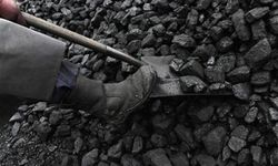 Sepa approval of KPT's coal handling operation fails to address public concerns