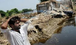 Sink or swim: Who will save Pakistan's drowning farmers?