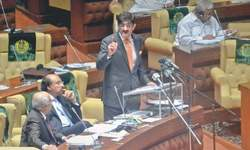 Rs739bn deficit budget for Sindh unveiled