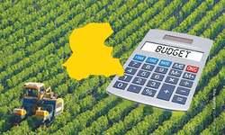 Sindh's lacklustre agricultural budget