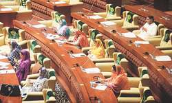 Sindh Assembly seeks compensation for heirs of heatwave victims