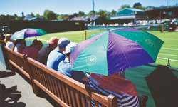 Umbrellas up at Wimbledon — to keep sun off