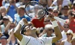 Wimbledon heat on Djokovic, Serena, Sharapova